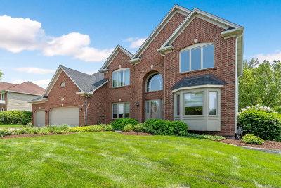 Batavia Single Family Home For Sale: 710 Wind Energy Pass
