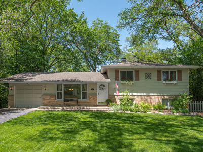 Downers Grove Single Family Home For Sale: 228 41st Street