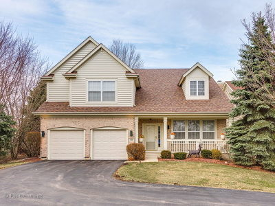 Vernon Hills Single Family Home For Sale: 528 Valhalla Terrace