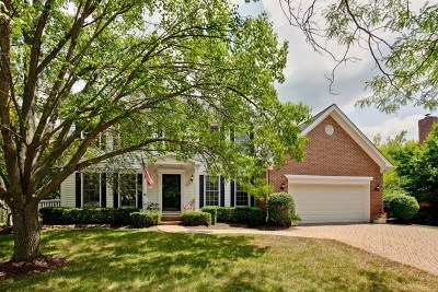 Vernon Hills Single Family Home For Sale: 357 South Old Wood Court