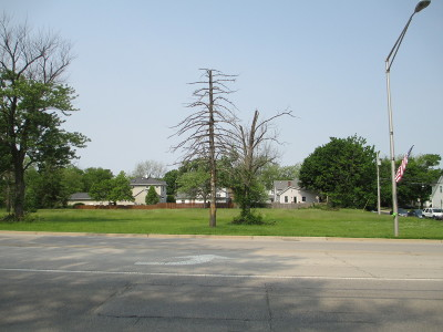 Lemont Residential Lots & Land Contingent: 1002 State Street