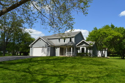 Algonquin  Single Family Home For Sale: 19n963 Manito Trail