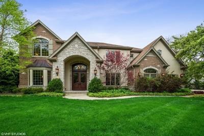 Barrington  Single Family Home For Sale: 1271 Burr Oak Lane