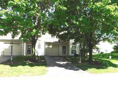 Streamwood Condo/Townhouse Price Change: 16 Carey Lane #16