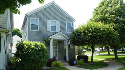 Plainfield Single Family Home Contingent: 4202 Rivertowne Court