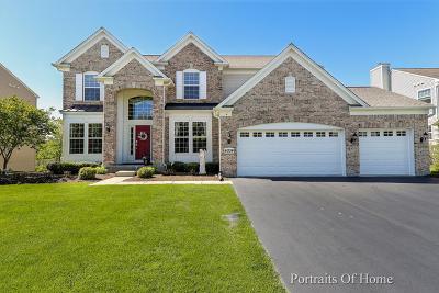 Carpentersville Single Family Home For Sale: 4004 Stratford Lane