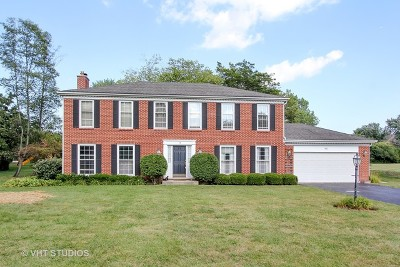 Libertyville Single Family Home For Sale: 962 Terre Drive