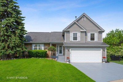 Buffalo Grove Single Family Home Price Change: 252 Stanton Court East