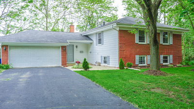 Lisle Single Family Home For Sale: 4407 Shabbona Lane