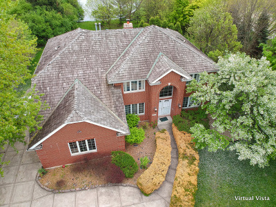 Oak Brook Single Family Home For Sale: 3021 Meyers Road