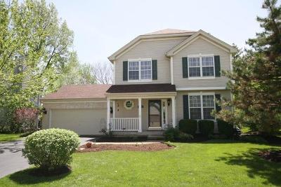 Carpentersville Single Family Home For Sale: 7041 Nathan Lane