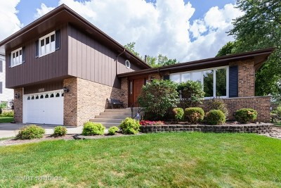 Downers Grove Single Family Home For Sale: 1111 39th Street