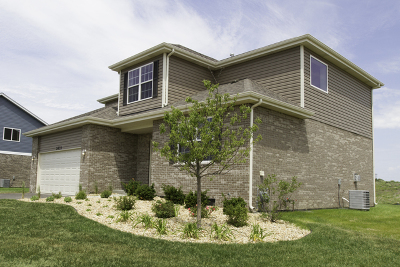 New Lenox Single Family Home For Sale: 1526 Edentenny Road