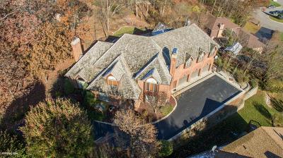 Homer Glen Single Family Home For Sale: 16139 South Pin Oak Court