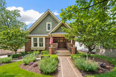 Naperville Single Family Home For Sale: 341 South Wright Street