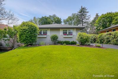 Glen Ellyn Single Family Home For Sale: 250 Spring Avenue