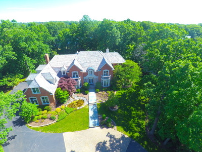Mundelein Single Family Home For Sale: 21136 West Andover Drive
