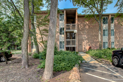 Lisle Condo/Townhouse For Sale: 6020 East Lake Drive #2A