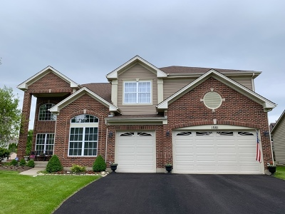 Algonquin  Single Family Home For Sale: 1981 Broadsmore Drive
