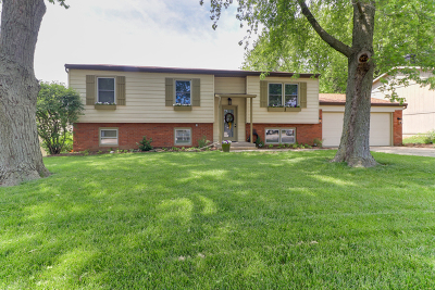 Normal Single Family Home For Sale: 1404 Baugh Drive