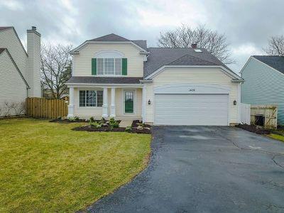 Bartlett Single Family Home For Sale: 1432 Snow Drift Circle