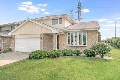 Alsip Single Family Home For Sale: 11441 South Lamon Avenue
