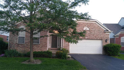 Orland Park Single Family Home Contingent: 9341 Dunmurry Drive