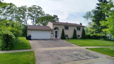 Vernon Hills Single Family Home For Sale: 314 Greenbrier Lane