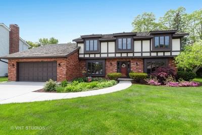 Libertyville Single Family Home For Sale: 1101 Furlong Drive