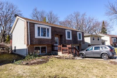 Mundelein Single Family Home For Sale: 875 Bonniebrook Avenue