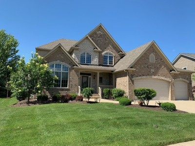 Naperville Single Family Home New: 4139 Callery Road