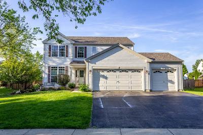 Huntley Single Family Home For Sale: 10740 Shenandoah Drive