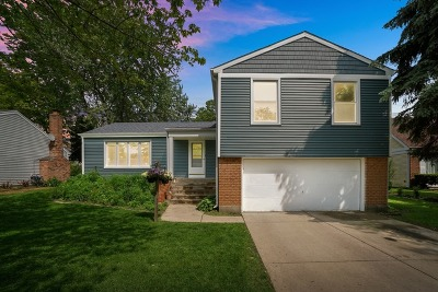 Vernon Hills Single Family Home For Sale: 303 Amherst Court