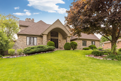 Lisle Single Family Home For Sale: 6122 Elm Street
