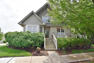 Geneva Single Family Home For Sale: 0n553 Armstrong Lane