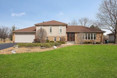 Mokena Single Family Home For Sale: 10030 Derby Lane
