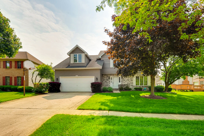 Hoffman Estates Single Family Home For Sale: 4855 Castaway Lane