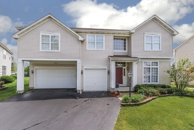 Carpentersville Single Family Home For Sale: 4804 Cedarledge Court