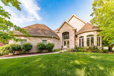 Homer Glen Single Family Home For Sale: 16229 Wildwood Lane