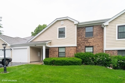 Schaumburg Condo/Townhouse For Sale: 85 Marble Hill Court #B2