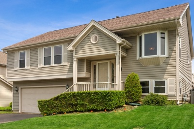 Lake Zurich Single Family Home For Sale: 1266 Lexington Lane