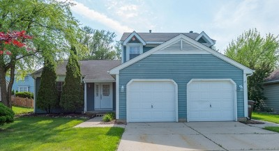 Crystal Lake Single Family Home For Sale: 1004 Hawthorne Drive