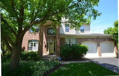 Libertyville Single Family Home For Sale: 14212 Oakwood Court