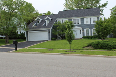 Mundelein Single Family Home For Sale: 800 Ambria Drive