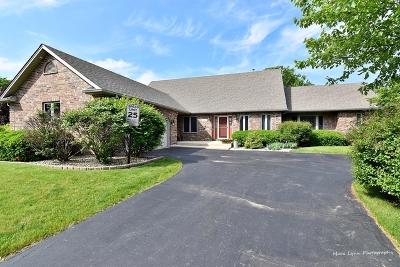 Geneva Single Family Home For Sale: 3379 Merganzer Court