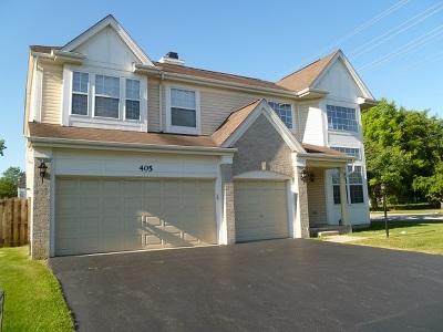 Palatine Single Family Home For Sale: 405 East Home Avenue