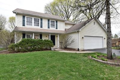 Geneva Single Family Home For Sale: 719 Center Street