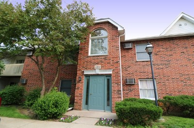 Lake In The Hills Condo/Townhouse Price Change: 1384 Cunat Court #1C
