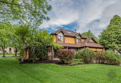 Woodridge Single Family Home For Sale: 6824 Didrikson Lane