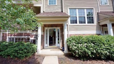 Palatine Condo/Townhouse For Sale: 25 East Illinois Avenue